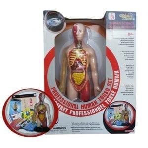 חקר גוף האדם