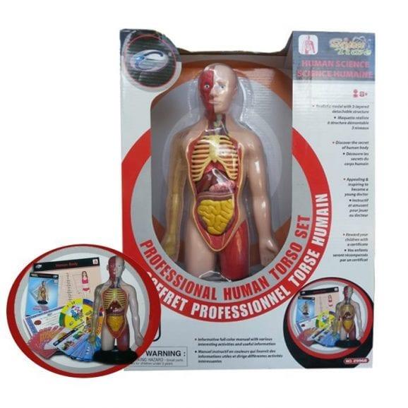 מוצר לחקר גוף האדם