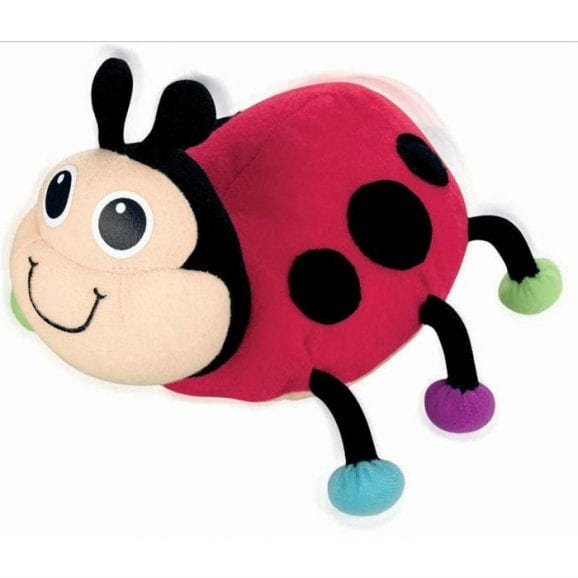 תפוס אותי - חיפושית