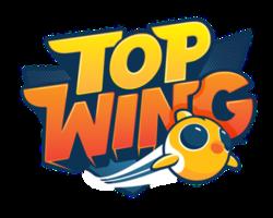 טופ ווינגס - כנפי העל - Top Wings