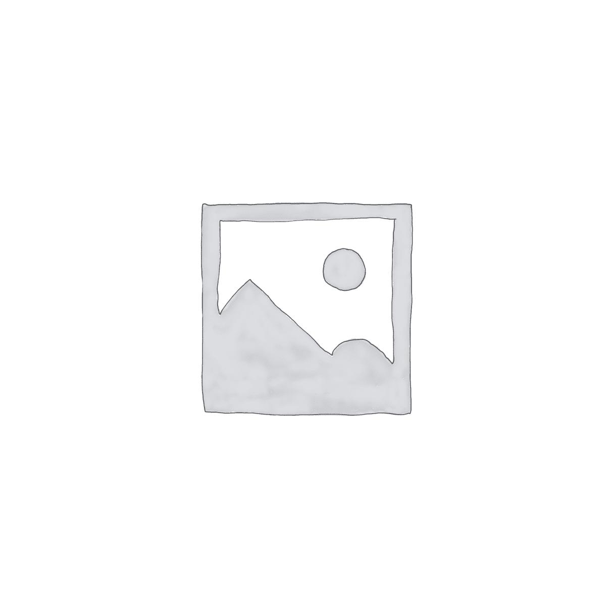 פליימוביל מזחלת שלג עם זוג מלכותי - 9474